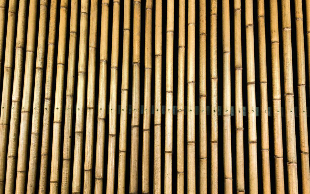 5 fordele ved havemøbler i bambus